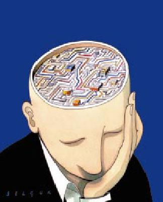 cerveau2 dans AVIDE DE TESTS
