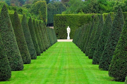 Imprime article1430 andr le n tre le roi des jardins for Jardinier paysagiste versailles